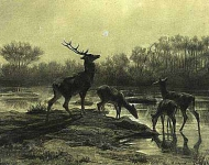 Deer Drinking by a Moonlit Lake
