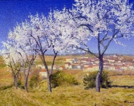 Achille Louge - Flowering Almond Trees Cailhau
