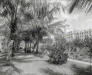 Palm Beach, Fla., circa 1894. Hotel Royal Poinciana, Lake Worth